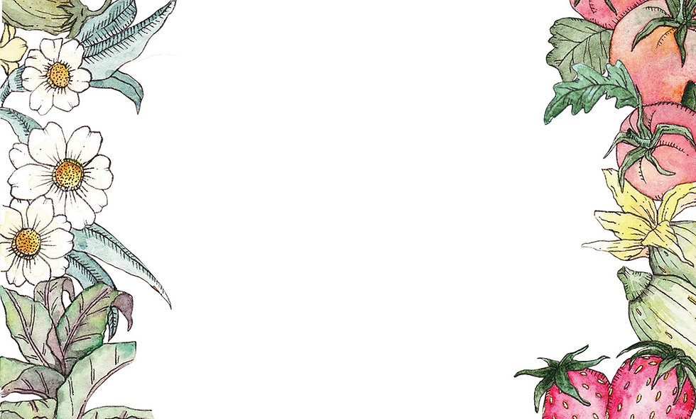SFLT-garden-drawing_1200x724.jpg