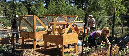 Community Dig-In at Slow Food Lake Tahoe's Food Bank Garden located in Truckee, CA