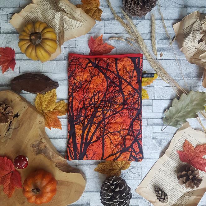 3 Couleurs d'automne (3).jpg