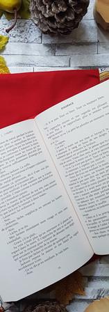 Protèges livres (25).jpg