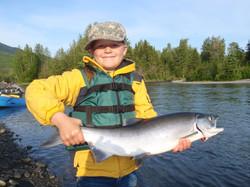 Kenai RIver Sockeye Salmon