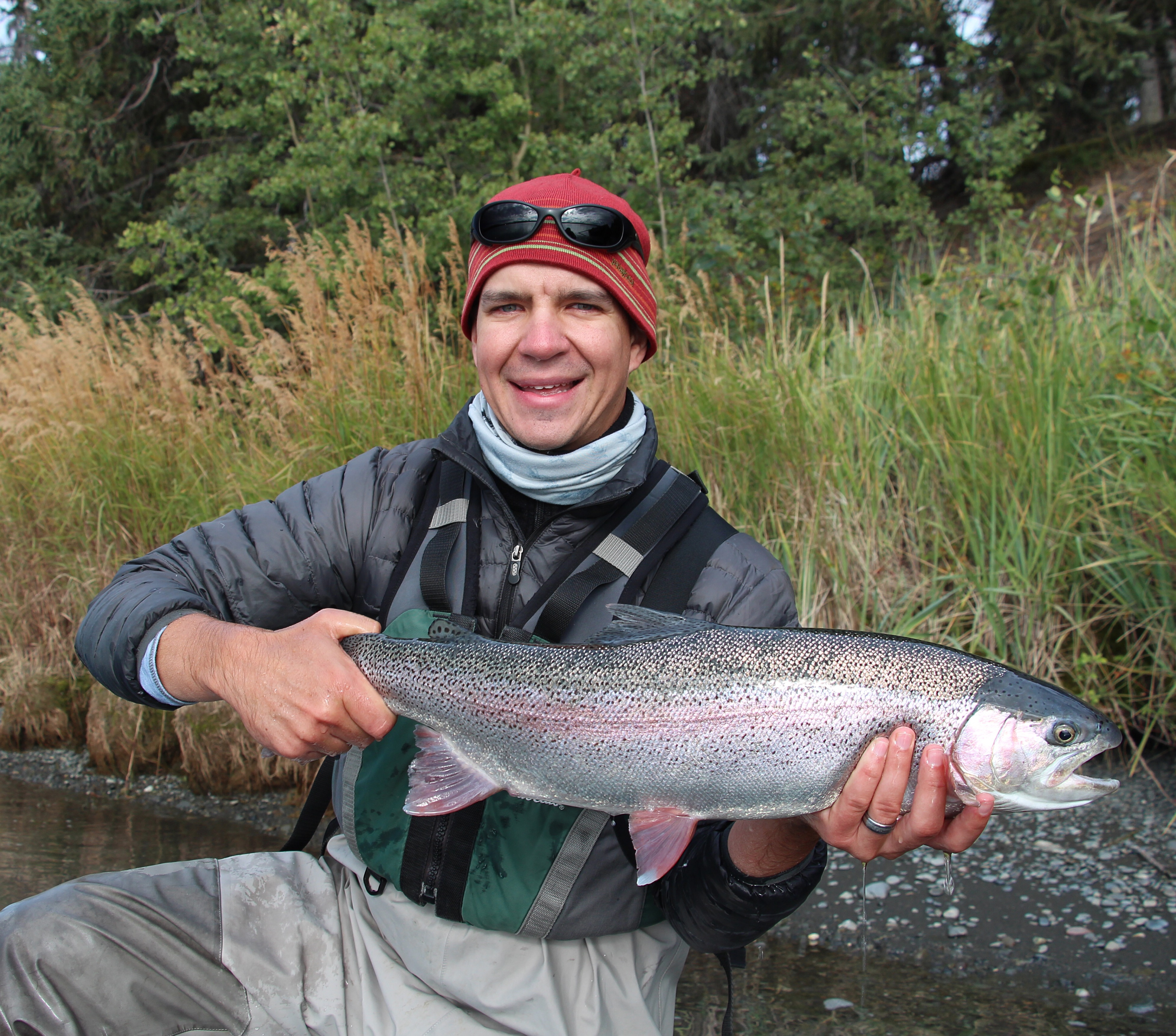 Kenai River Rainbow