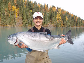 Kenai River guided salmon fishing