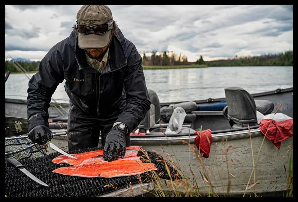 Alaska red salmon