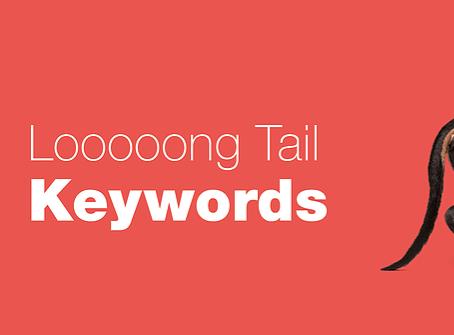 Wat zijn Long Tail Keywords en hoe dragen ze bij tot je online vindbaarheid