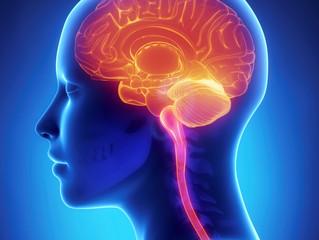 O que é Neurologia?