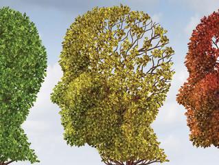 Demência: Aspectos gerais