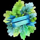 Floral placa 4