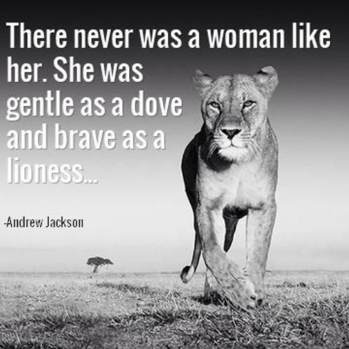 lioness quote.jpg