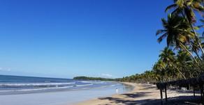 Ilha de Boipeba: O destino que você precisa descobrir na Bahia