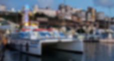Catamarã Biotur Salvador Morro Bahia