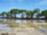 Ilha de Boipeba - Castelhanos