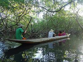 Ilha de Boipeba - Passeio de Canoa