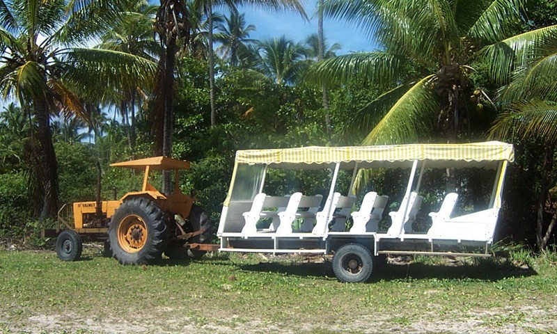 Transporte em Morro de SP