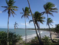 Ilha de Boipeba - Praia da Cueira