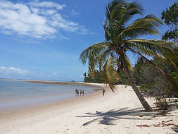 Ilha de Boipeba - Ponta dos Castelhanos