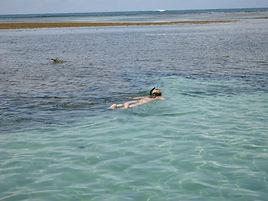 Ilha de Boipeba - Mergulho