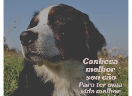 Conheça melhor seu cão para ter uma vida melhor com ele!