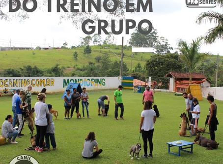 A Importância do treino em grupo