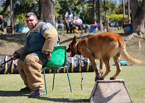 Canil K9 - Coragem canina