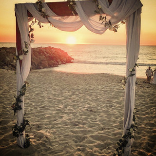Wooden Arbour with vine and cloth draping