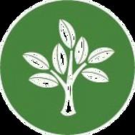 Logo%2520Env_edited_edited.png