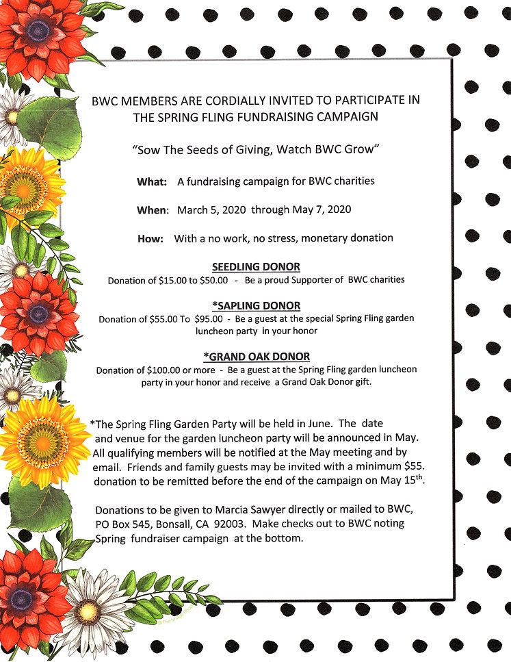 2020 Spring Fling Fundraiser Flyer.jpg