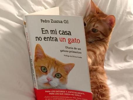 El libro ideal para los Cats Lovers