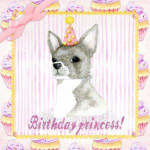 cumpleaños mascota pelos patitas mad magazine