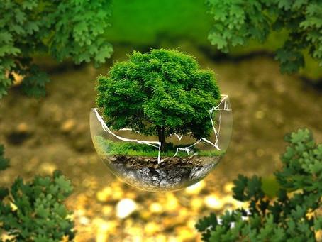No destruyas la naturaleza, ¡Vive con ella!