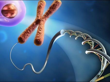 La revuelta que causó el genoma humano en la ciencia