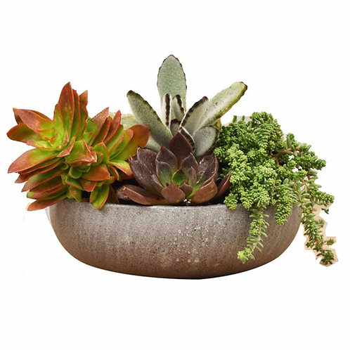 Bowl Planter Baulo, Grey