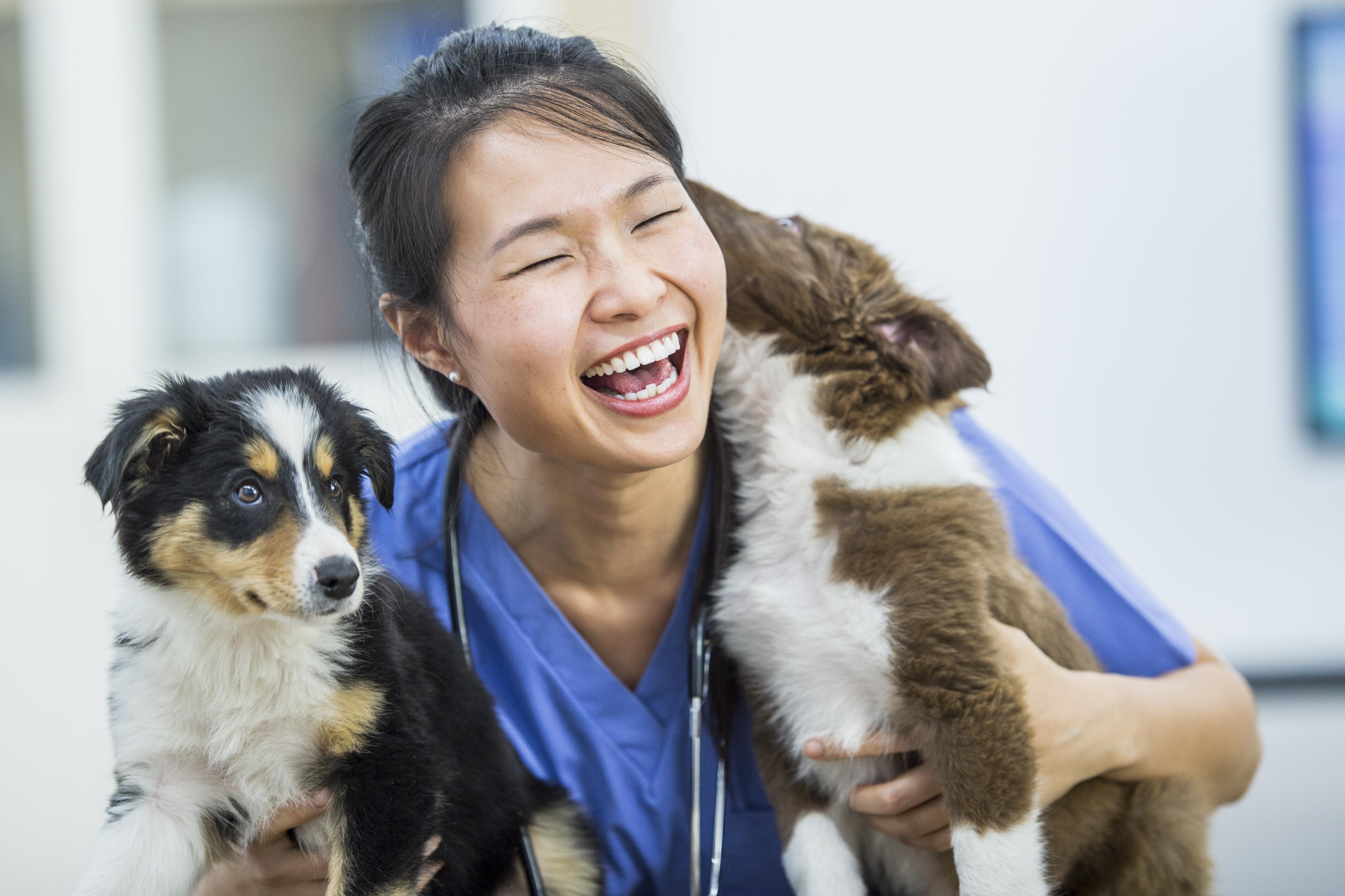 Veterinary Medicine AssistantVET