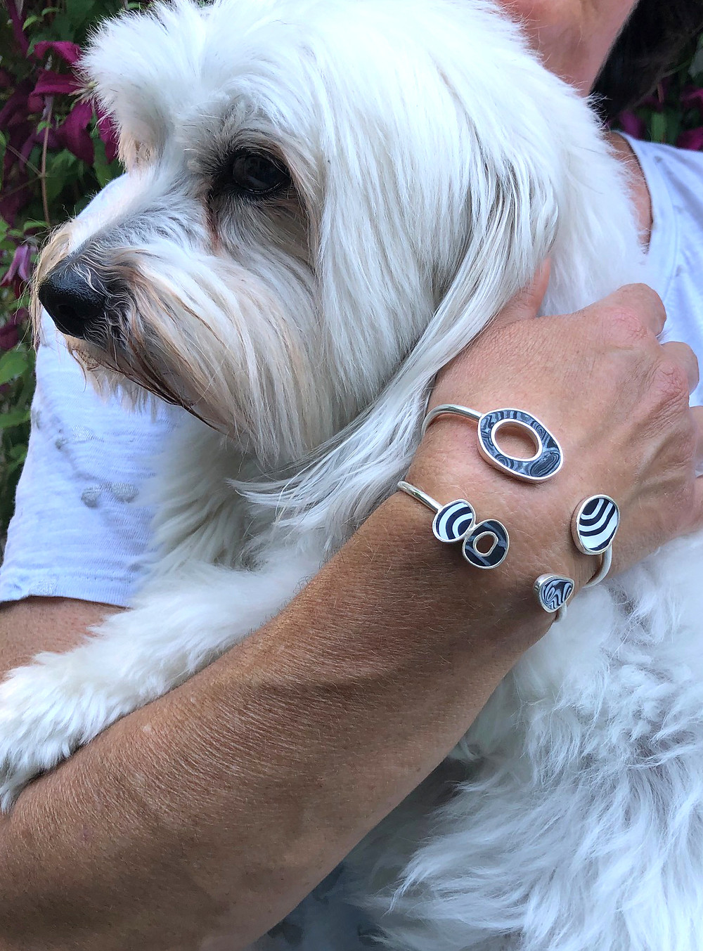 Coton de Tulear dog with Nancy Marland Jewelry Bebop silver and polymer bracelets