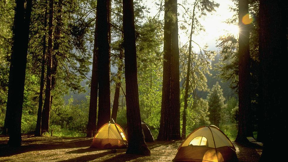 camping-in-yosemite-woods-523679818-57a1012e3df78c3276e958ab.jpg