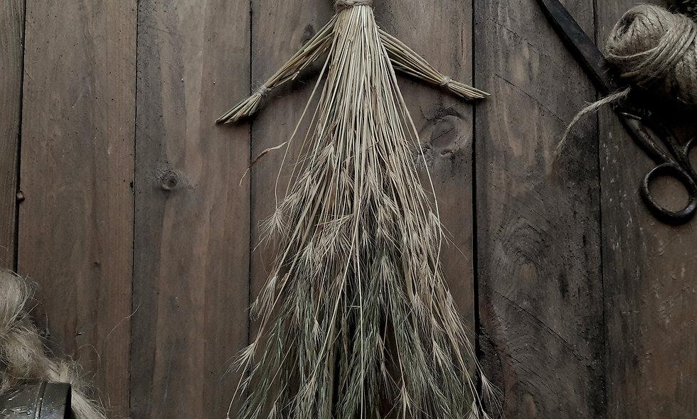 Bambola in Erba Codola e Orzo Selvatico.