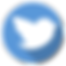 60486-business-service-twitter-internet-