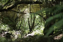ponte romano-ponte cabalar-rutas-senderi