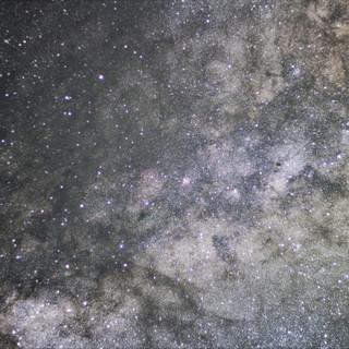 Starlight Manzaneda.jpg