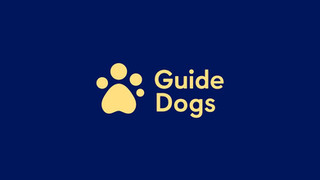 We Are Guide Dogs