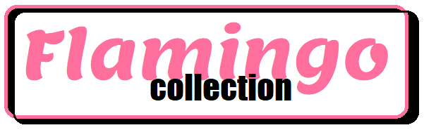 Flamingo fashion and accessories