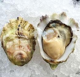 1/2  Doz Beach Oysters