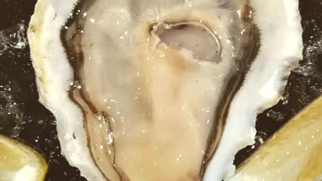 1/2  Doz Muirgen Oysters
