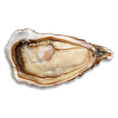 1/2 Doz Achill No 2 Oyster