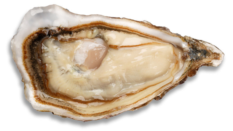 Achill No 2 Oyster