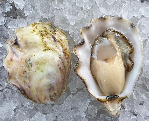1/2 Doz Sunseeker Oysters