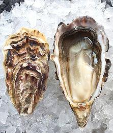 1/2  Doz Tsarskaya Oysters
