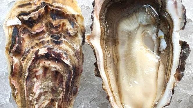 Tsarskaya Oysters