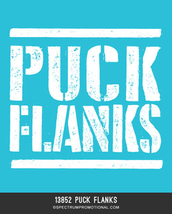 13852 Puck Flanks