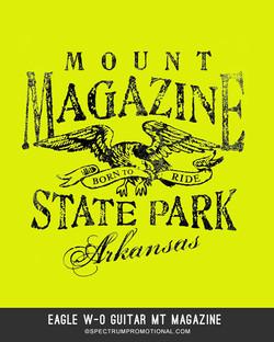 Eagle w-o Guitar Mt Magazine